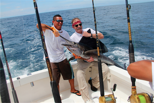 Tom's sailfish (2)